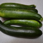 Squash - Zucchin