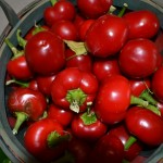 Pepper, Hot - Cherry