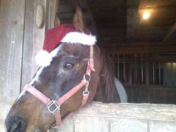 King Jackson Christmas