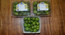 Organic Kiwi Berries for Sale