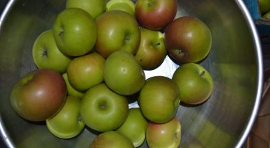 Organic Apples Available Now
