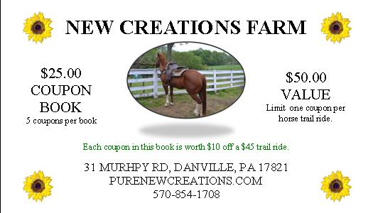 Trail ride coupon books new creations farm for Horseback riding lesson gift certificate template