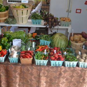 Vegetables Organically Grown