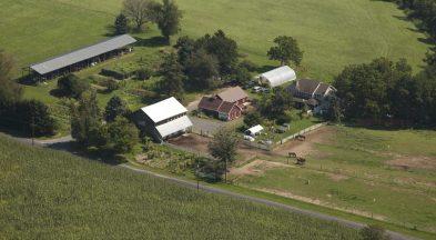 New Creations Farm