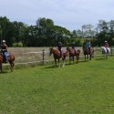 Horseback Trail Rides